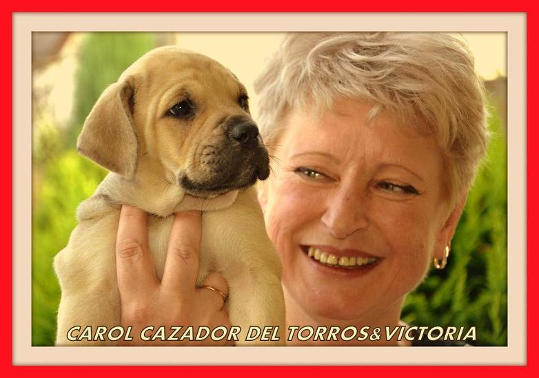 Carol Cazador del Torros